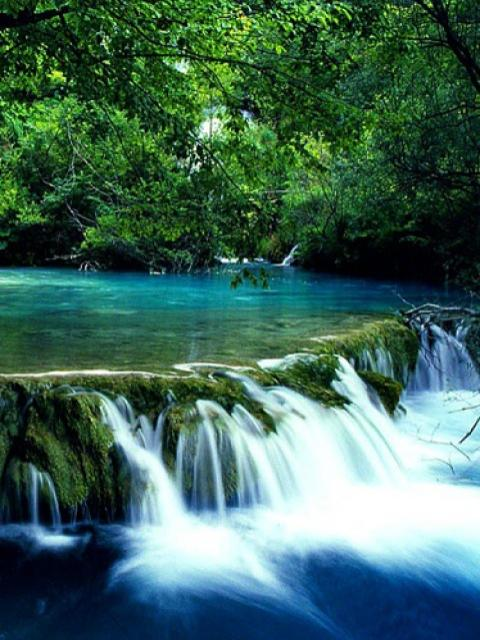 Cascada De Apa La Munte